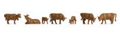 Cows, brown