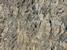 Wrinkle Rocks Großvenediger